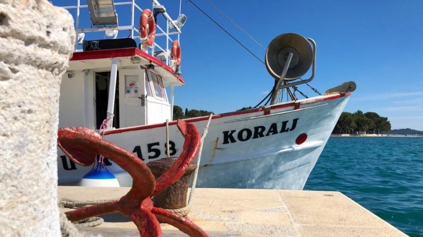 boat koralj brijuni national park
