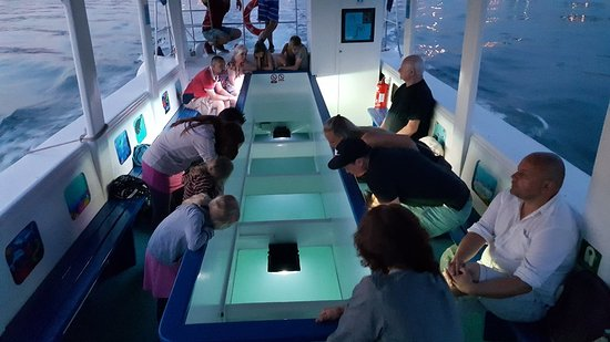 glass boat igor
